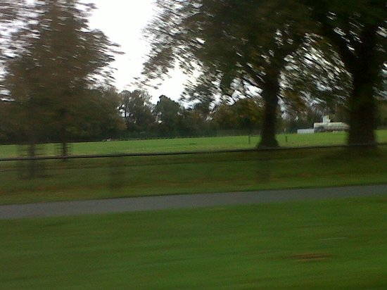 the Phoenix park is really all green park