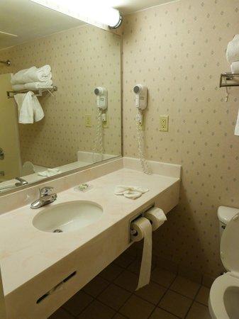 Country Inn & Suites By Carlson, Orlando Airport: Banheiro