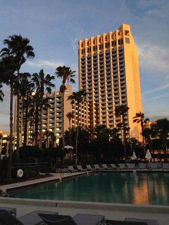 Hilton Orlando Buena Vista Palace Disney Springs : view from pool