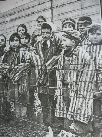 Dokumentationszentrum KZ Bergen-Belsen: Prigionieri