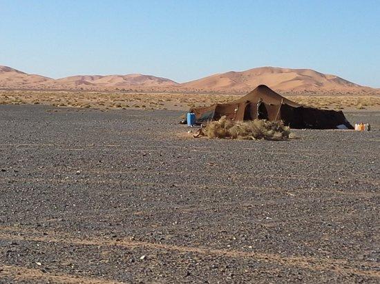 Sahara Dream Tours: niente sovrastrutture... sotto il cielo... sotto una tenda