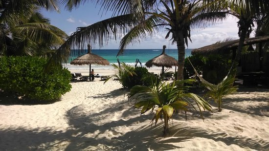 Playa Mambo : View from the porch on verde cabana