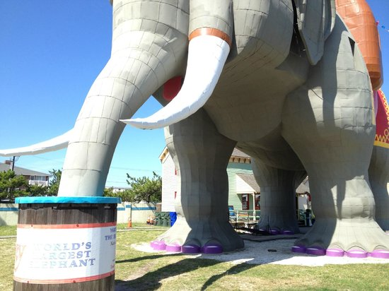 Lucy the Elephant : Purple toenails?