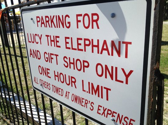 Lucy the Elephant : Parking is available.