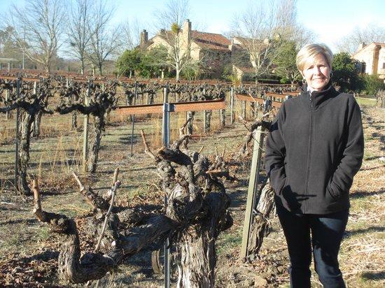 Vintners Inn in the Ferrari Carano Vineyards