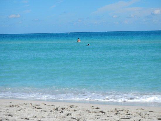 Hotel Riu Plaza Miami Beach : Beach area behind the hotel...AMAZING!