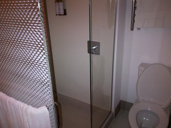 YOTEL New York at Times Square West: Toilet with shower. No door on shower