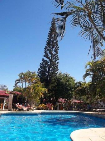 Guacamaya Lodge: Poll side view