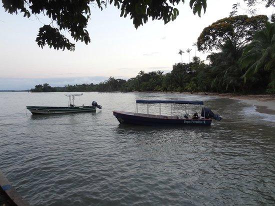Popa Paradise Beach Resort: Boats waiting to take you somewhere