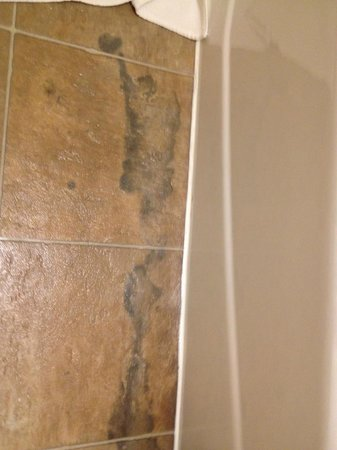 Residence Inn Chicago Lombard: Bathroom