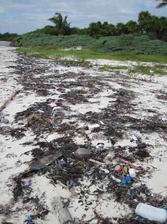 Sian Ka'an Biosphere Reserve: Sian Ka'an plastic #4