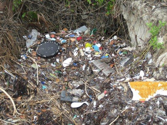 Сиан-Каан, Мексика: Sian Ka'an plastic #1