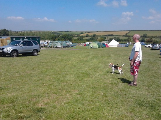 Higher Moor Farm: campsite