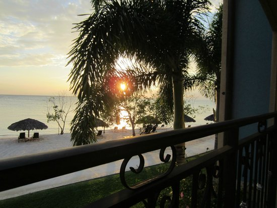 Sandals South Coast : Sunset from our balcony, through a Foxtail Palm