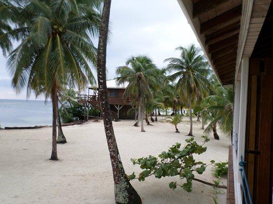 Pelican Beach - South Water Caye: Room 5