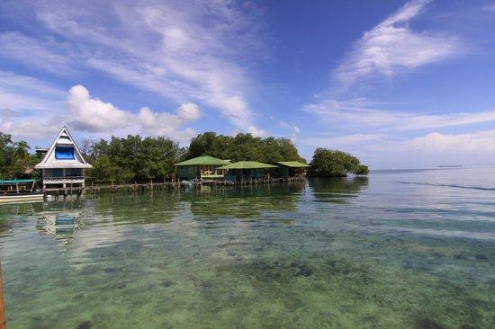 Popa Paradise Beach Resort : Snorkeling at Coral Caye