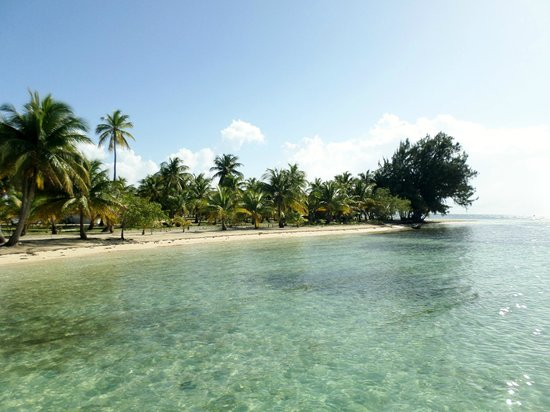Pelican Beach - South Water Caye: Beach