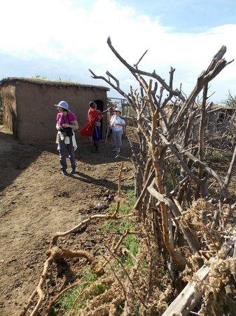 Maji Moto Maasai Cultural Camp : Widow's Village