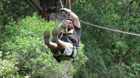 Tsitsikamma Canopy Tours: Adernalina Pura