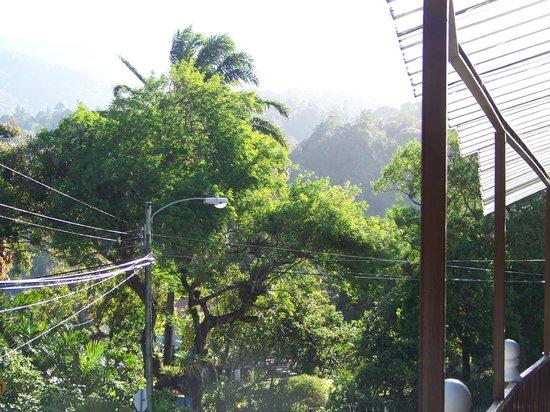 La Casa de la Abuela: the view from the back porch