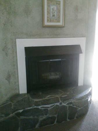 Sea Otter Inn: Fireplace