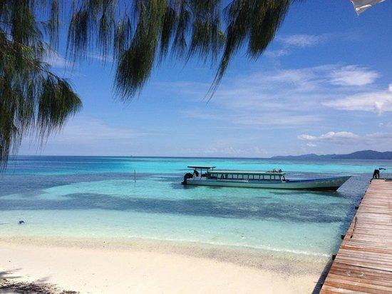 Wai Eco Resort - Scubacqueando Diving: Wai eco Resort West Papua