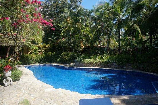 Villas Nicolas: Poolside