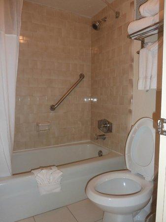 Clarion Inn & Suites: Habitacion