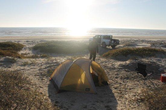 Padre Island National Seashore Camping Reviews
