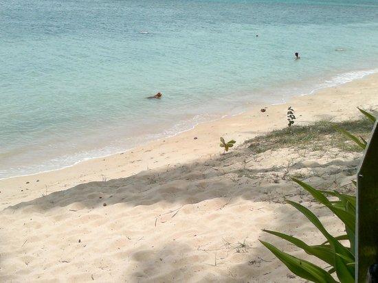 Fisherman's Village: koh samui beach