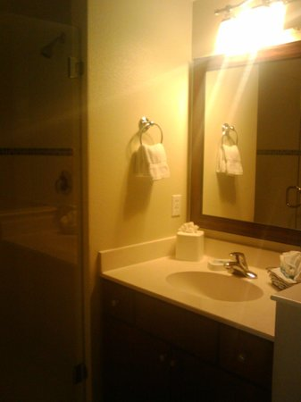 Wyndham Oceanside Pier Resort: Bathroom