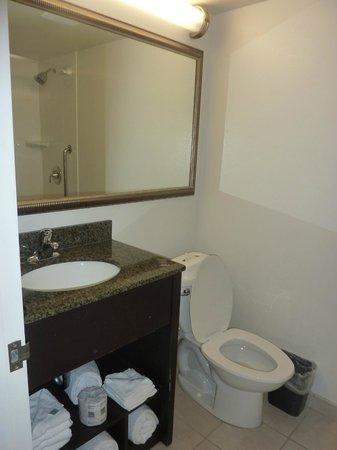 Holiday Inn & Suites Across from Universal Orlando : Habitación del hotel