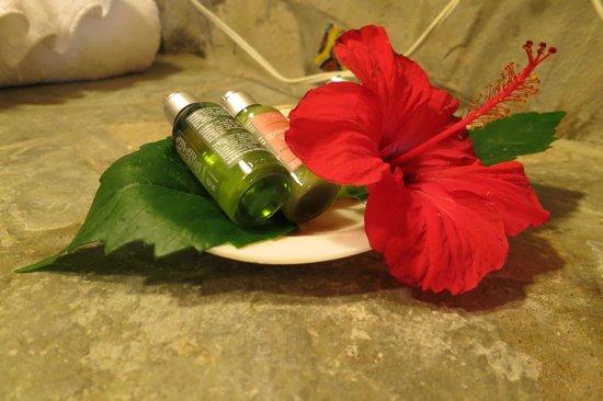 Natura Cabana Boutique Hotel & SPA: Bath products