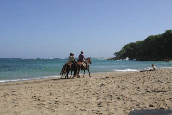 Natura Cabana Boutique Hotel & Spa: Horseback riding