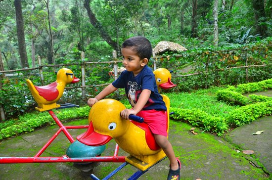 The Tall Trees Munnar: Play area for kids