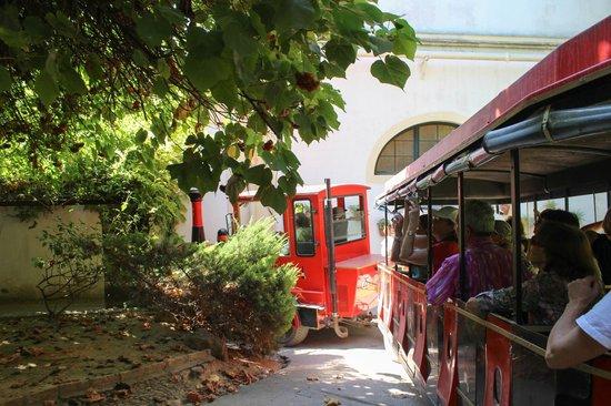 Bodegas Tío Pepe: На таком трамвайчике нас катали