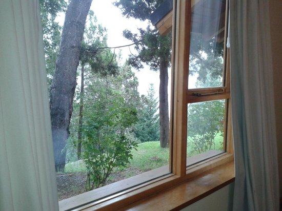 Peninsula Petit Hotel: Vista desde la cama