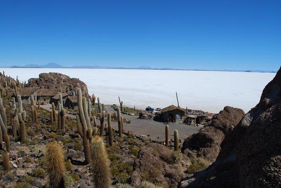 Cristal Samaña Salt Hotel: Ilha Incahuasi - em pleno deserto de sal