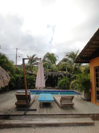 Casa Calexico: Pool
