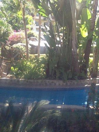 Velas Vallarta: Lovely landscaping