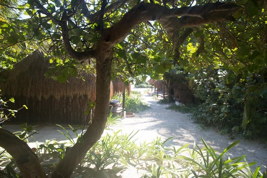 Retiro Maya Villas: Breakfast with the garden view.