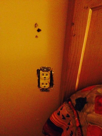 Howard Johnson Inn London: Electrical outlet with no plate, cigarette burns on wall and headboard (we were told this was a