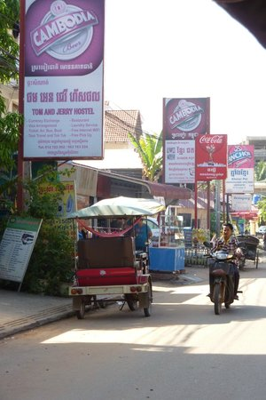 Bopha Pollen Hotel: Street view across from hotel