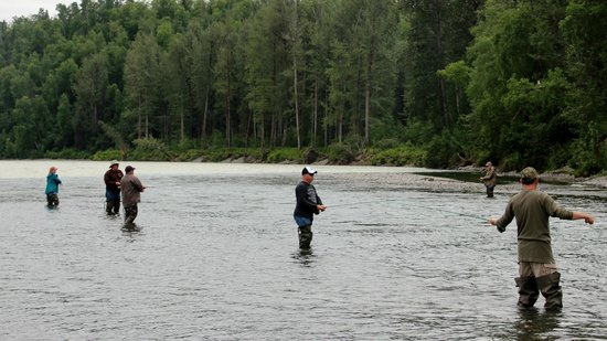 Talkeetna Sundog Kennel: Fishing