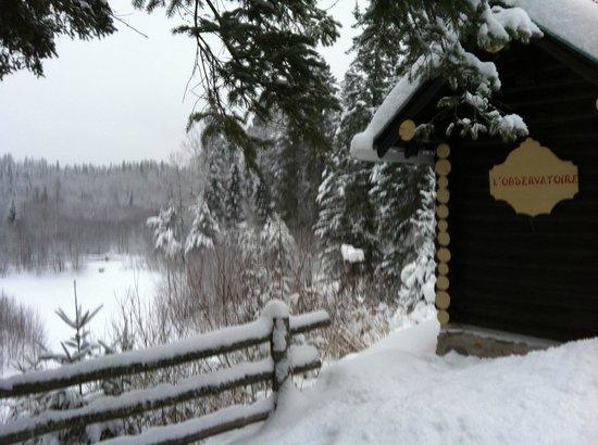 Domaine Le Bostonnais : Le Lac l'hiver