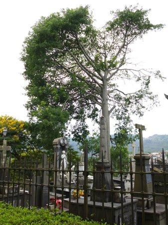 Igreja Nossa Senhora do Carmo: Cemitério
