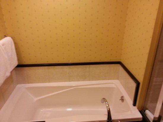 The Battle House Renaissance Mobile Hotel & Spa: tub