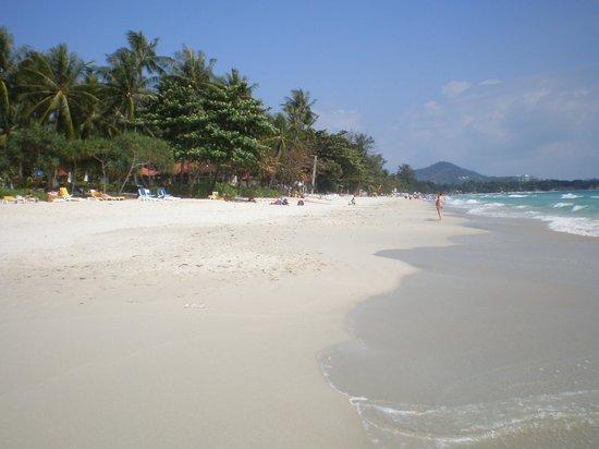 Centara Grand Beach Resort Samui : Strandbereich vor dem Hotel