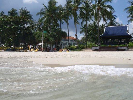 Centara Grand Beach Resort Samui : Hotel vom Stand aus gesehen