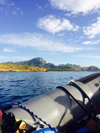 Kauai Sea Rider Snorkel & Whale Watching Tours: Snorkel trip